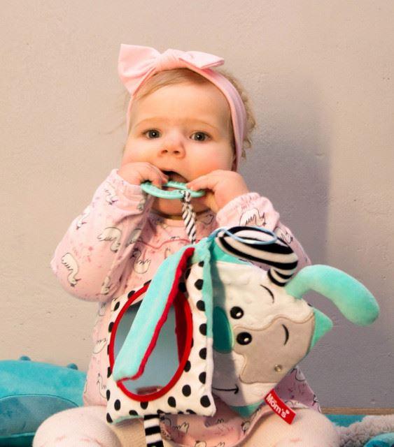 Hencz Toys - Książeczka Minty